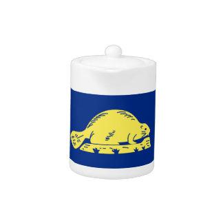Bandera del estado de Oregon (revés)