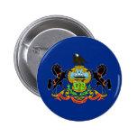 Bandera del estado de Pennsylvania Pins