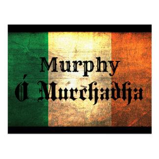 Bandera del irlandés de Murphy Postales