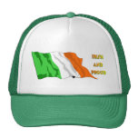 Bandera del irlandés del día de St Patrick Gorros Bordados