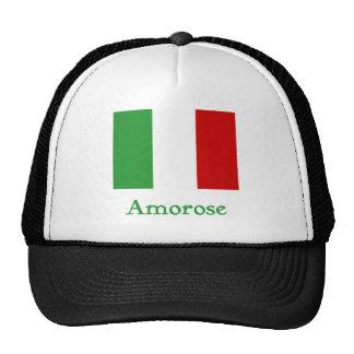 Bandera del italiano del _ gorras