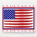 Bandera del kajak de los E.E.U.U. Alfombrilla De Ratones