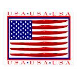Bandera del kajak de los E.E.U.U. Tarjeta Postal