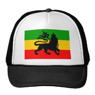 Bandera del león gorros