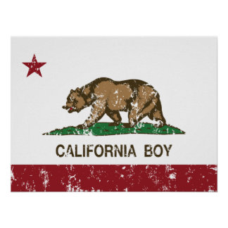 Bandera del muchacho de California Impresiones