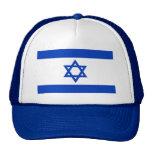 Bandera del mundo de Israel Gorras De Camionero