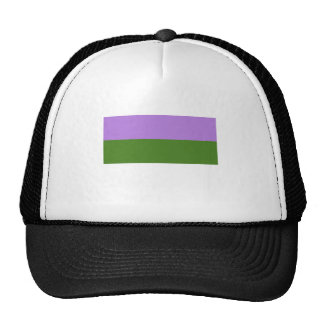 Bandera del orgullo de Genderqueer Gorros Bordados