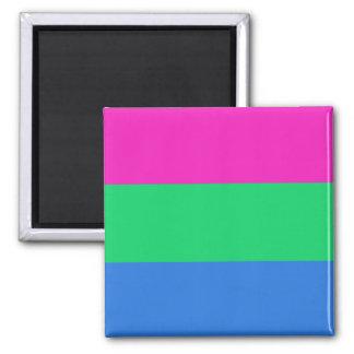 Bandera del orgullo de Polysexual Imán Cuadrado