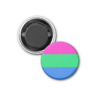 Bandera del orgullo de Polysexual Imán Redondo 3 Cm