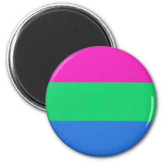 Bandera del orgullo de Polysexual Imán Redondo 5 Cm