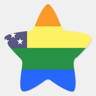 Bandera del orgullo del arco iris de los E.E.U.U. Pegatina En Forma De Estrella