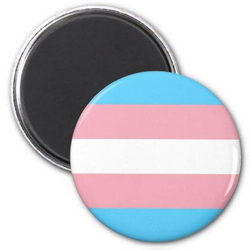 Bandera del orgullo del transexual imanes para frigoríficos