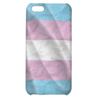 Bandera del orgullo del transexual que agita