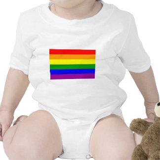 Bandera del orgullo gay/bandera del arco iris traje de bebé
