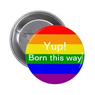 Bandera del orgullo gay llevada esta manera pin redondo de 2 pulgadas