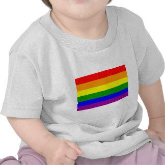 Bandera del orgullo gay camiseta
