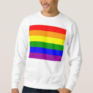 Bandera del orgullo gay sudadera con capucha
