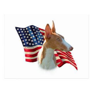 Bandera del perro de Ibizan Tarjetas Postales