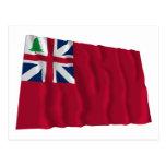 Bandera del rojo del árbol de pino postal