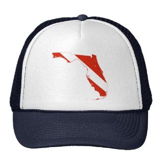 Bandera del salto de la silueta del estado de la gorra