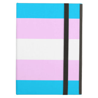 Bandera del transexual