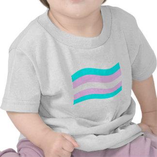 Bandera del transexual que agita camisetas