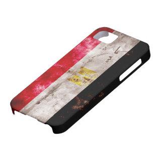 Bandera egipcia iPhone 5 protectores