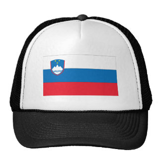 Bandera eslovena gorros