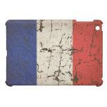 Bandera francesa apenada iPad mini carcasas
