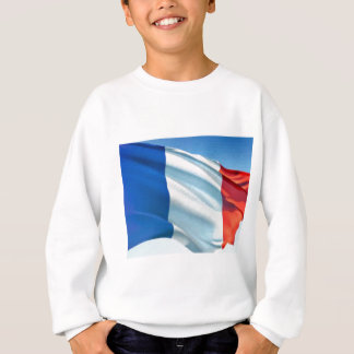 Bandera francesa playera