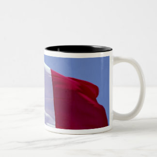 Bandera francesa tazas de café