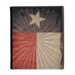 Bandera fresca de Tejas del Grunge