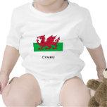 Bandera Galés Trajes De Bebé
