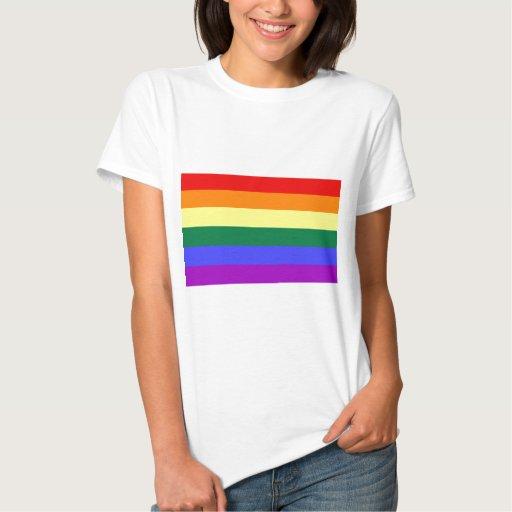 Bandera gay remera