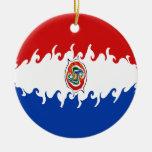 Bandera Gnarly de Paraguay Adorno Redondo De Cerámica