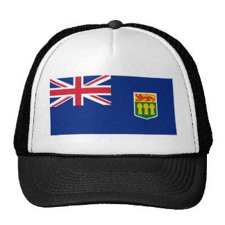 Bandera hipotética de Saskatchewan Gorro