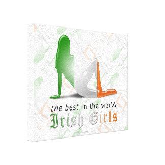 Bandera irlandesa de la silueta del chica lona estirada galerías
