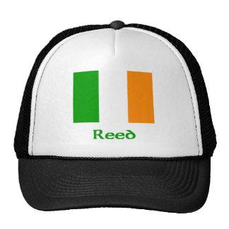 Bandera irlandesa de lámina gorras