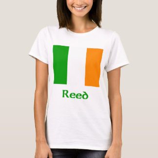 Bandera irlandesa de lámina playera