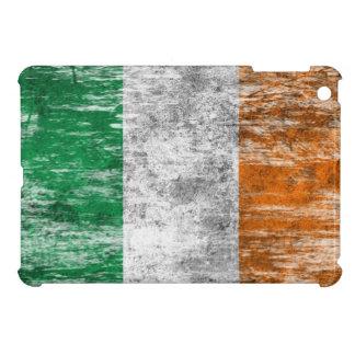 Bandera irlandesa rascada y llevada
