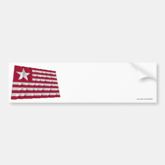 Bandera larga de la expedición pegatina para auto
