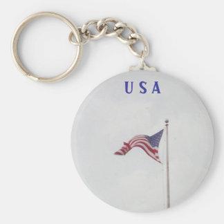 Bandera libre de los E.E.U.U. de la mosca - Llavero Redondo Tipo Pin