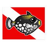 Bandera linda de la zambullida del Triggerfish del Postal