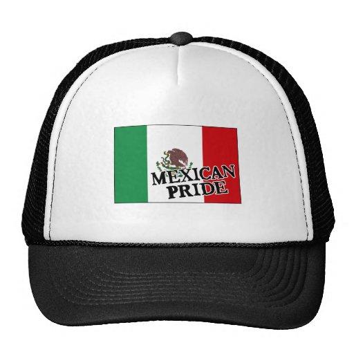 Bandera mexicana del orgullo gorros bordados