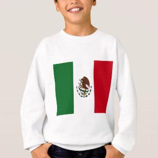 Bandera mexicana remeras