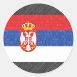 Bandera moderna del servio del modelo pegatinas redondas
