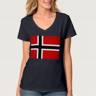 Bandera monocromática de Noruega Playera