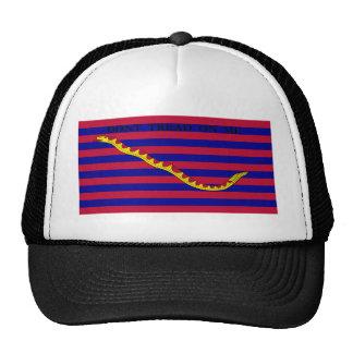 Bandera naval de Carolina del Sur durante guerra r Gorro