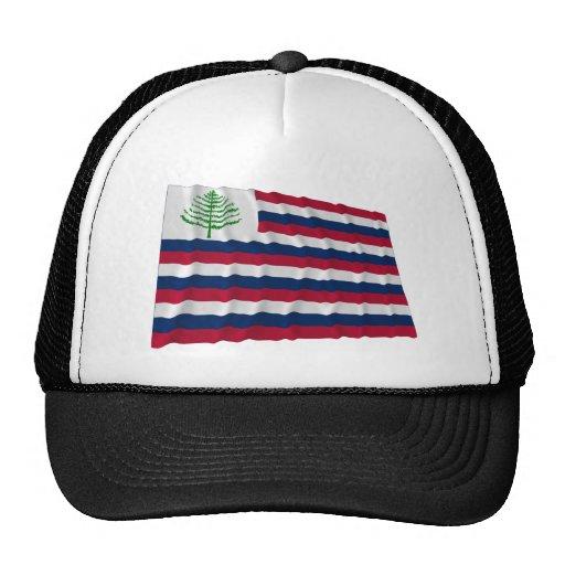 Bandera naval de Nueva Inglaterra Gorro