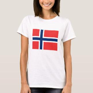 Bandera noruega playera